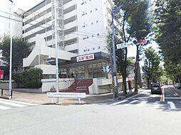 宮崎台パークハイツ