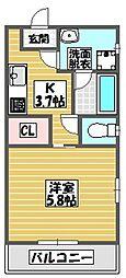 (仮)ミオナカンパニー店舗兼共同住宅(国場)503号室 5階1Kの間取り