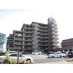 フェイブリット草加[4階]の外観