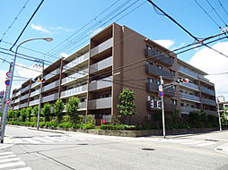 甲子園三番町ハイツ[5階]の外観