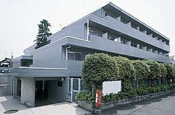 メゾンエクレーレ江古田[208号室]の外観