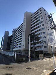 稲毛サンハイツ 9階 905