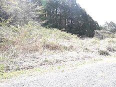 敷地面積は広々約141坪です。