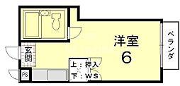 メゾン紫明[203号室号室]の間取り