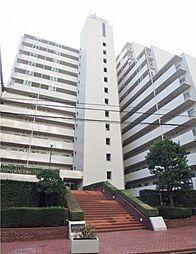 川口ハウス