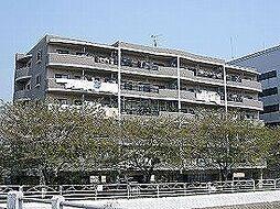 アルロッサ[5階]の外観