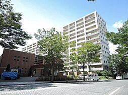 サングランデ・エルズモア 13階建の13階 B棟
