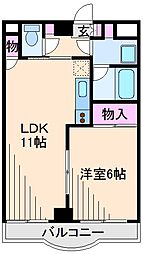 神奈川県横浜市港北区綱島東1丁目の賃貸マンションの間取り