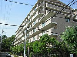 白鷹香枦園マンション[6階]の外観