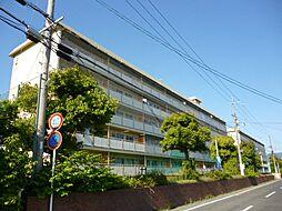 滋賀県東近江市八日市緑町の賃貸マンションの外観