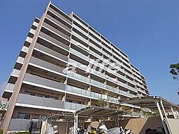 サニープレイス西芦屋2号館[9階]の外観