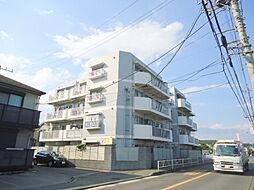 ジョイフルハイツ大沢(7038-1)