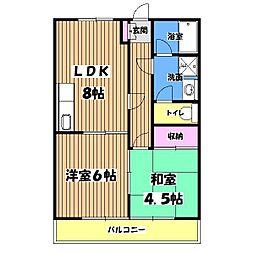 サナオマンション[1階]の間取り