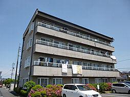 コーポ・ビックウェイブS棟[4階]の外観