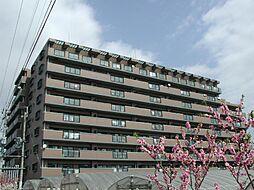 コアマンション柳丸[3LDK号室]の外観