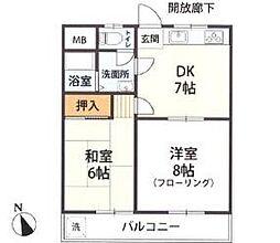 新松戸ニューハイツ[5階]の間取り