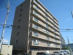 大阪府東大阪市加納8丁目の賃貸マンションの外観