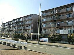 兵庫県伊丹市西野3丁目の賃貸マンションの外観