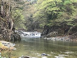 イワナなど渓流釣りを楽しめます。