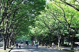 公園都立駒沢公園まで1039m