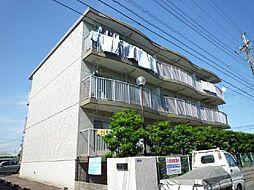 市川カトレアハイツ松塚[202号室]の外観