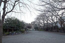 柴崎公園まで1563m