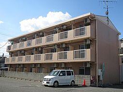 広島県東広島市西条本町の賃貸マンションの外観