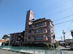 ピアシティ東和東小浜