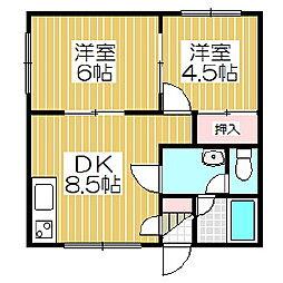 ドミールシャングウ[1階]の間取り