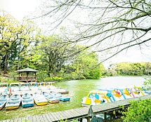 善福寺池(上池・下池)まで937m