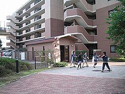 ベルパーク湘南茅ヶ崎 D館