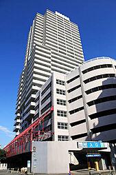 ソリッドタワー 31階