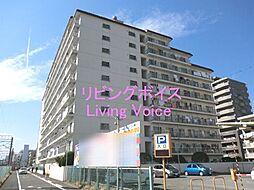 平塚市老松町 プリメーラ平塚