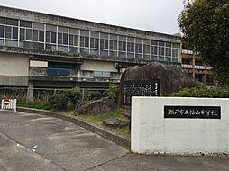 幡山中学校 徒歩 約34分(約2700m)