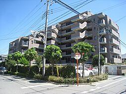 ロイヤルステージ鎌ヶ谷