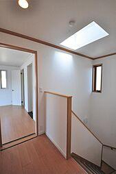 階段の上部にはトップライトが有り、自然の明かりも取り込ます。
