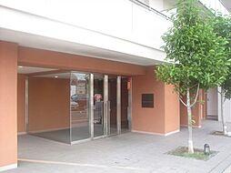エクセレントスクエアスイートマークス