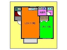 コットンハウスII 1階1LDKの間取り