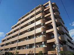 ライオンズマンション東新小岩[4F号室]の外観