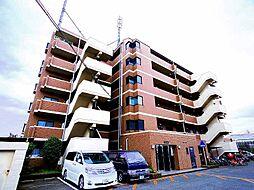 埼玉県新座市野火止1丁目の賃貸マンションの外観