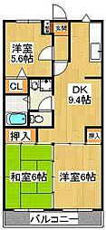 千葉県船橋市本中山5丁目の賃貸マンションの間取り