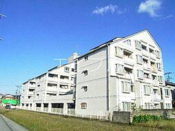 コスモハイツ高須2[2階]の外観