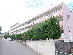 松丸第二コーポ[4階]の外観