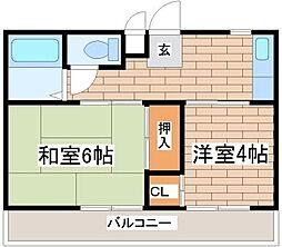 兵庫県神戸市須磨区飛松町5丁目の賃貸マンションの間取り