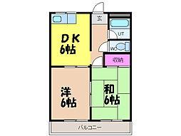 愛媛県松山市和泉南2丁目の賃貸マンションの間取り