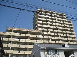 松山市土居田町715-1
