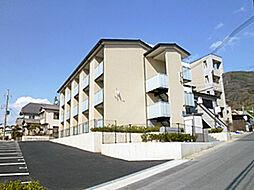 レオネクスト京都[204号室]の外観
