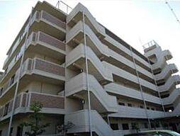 ドミール川崎[5階]の外観