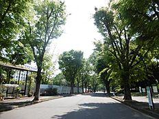 駒沢公園 300m 飲食店も併設しており、ペットと同じテーブルで食事ができます