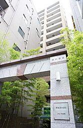 プロスペクト・グラーサ広尾[8階]の外観